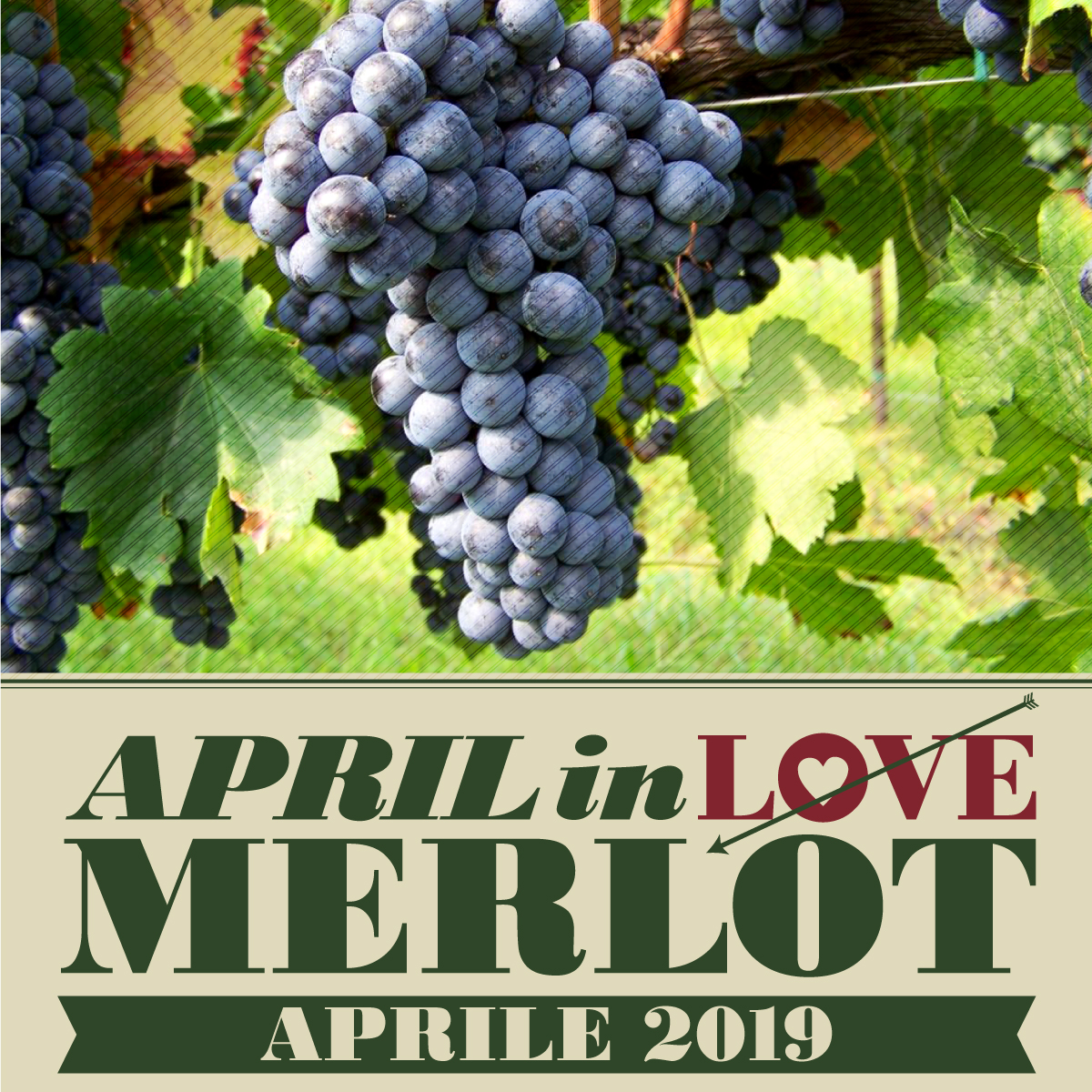 APRIL IN LOVE MERLOT